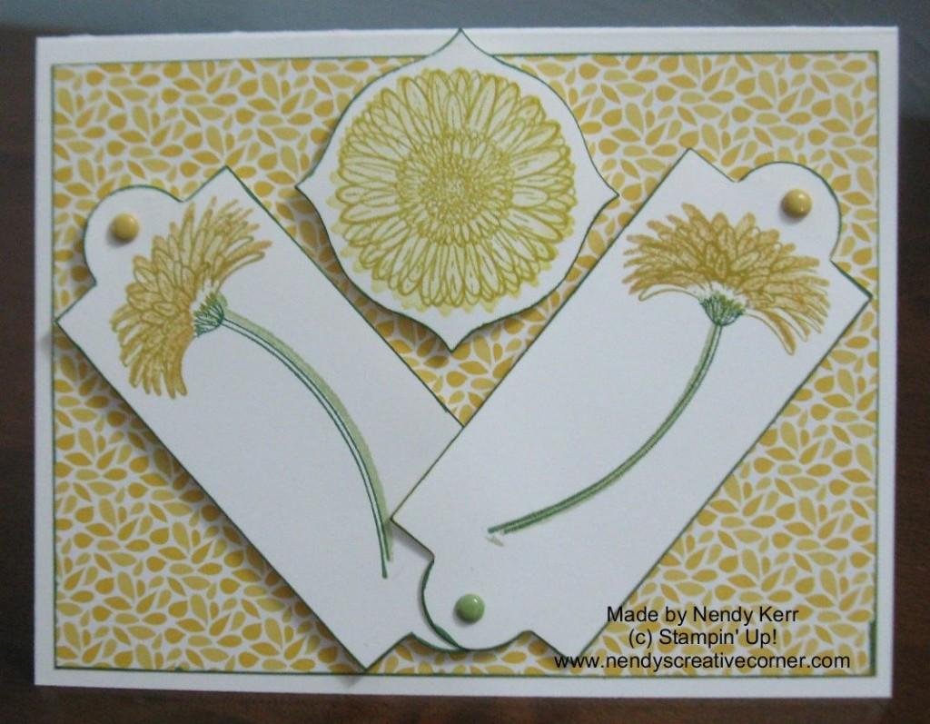Daffodil Reason to Smile