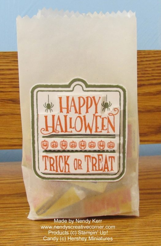 Whate Halloween Treat Bag